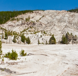 Yellowstone_2016_116