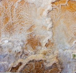 Yellowstone_2016_137