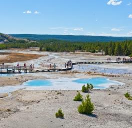 Yellowstone_2016_17