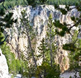 Yellowstone_2016_2