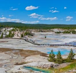 Yellowstone_2016_24