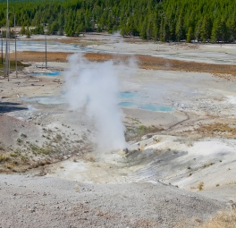 Yellowstone_2016_25
