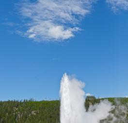 Yellowstone_2016_69