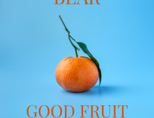 Bear Good Fruit